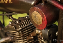 indian7